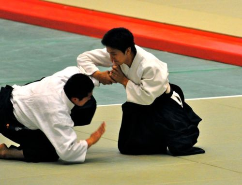 The Beauty of Aikido – Ueshiba Mitsuteru Waka Sensei 植芝充央 @ 120fps