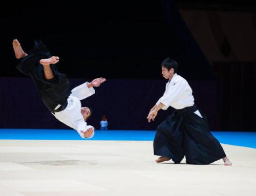 Aikido bemutató – Shirakawa Ryuji sensei, Summer Camp 2015 白川竜次 先生